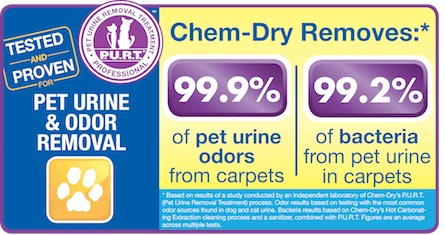 Pet Urine Removal Treatment By Westcoast Chem-Dry Removes 99.9% of Pet Urine Odors and 99.2% of Pet Urine Bacteria