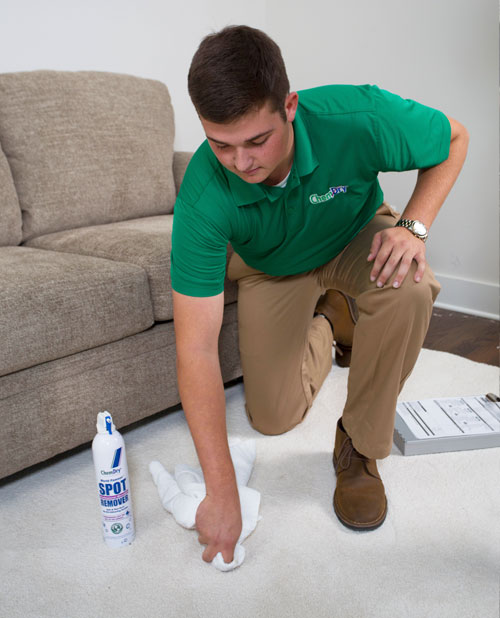 Westcoast Chem-Dry Technician Providing Stain Removal Service in Surrey